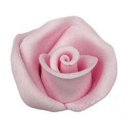 Róża 12 szt. w op.